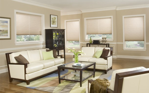 Beige living room blinds