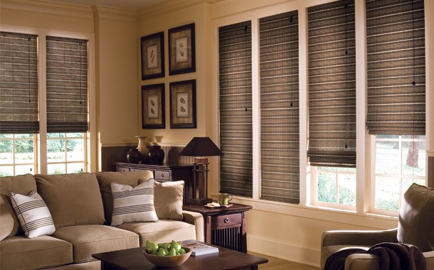 Brown living room blinds